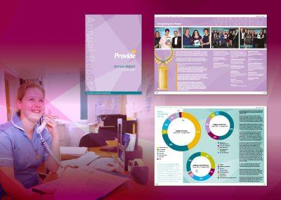 Provide Annual Report