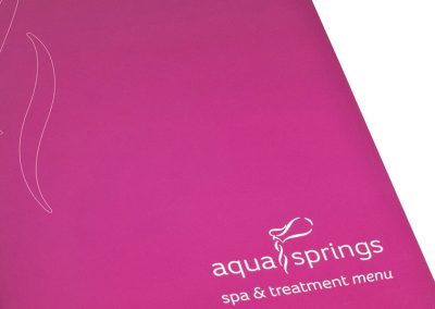 CLW Aqua Springs Treatment Menu