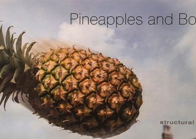 Wright-Consulting_Pinapples-and-bombs_Wimpole-Hall-Mailer