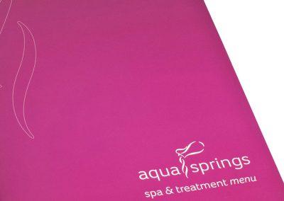 CLW Aqua Springs Treatment Menu